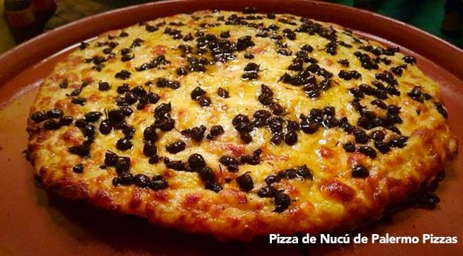 pizza de nucú gastronomía en chiapas