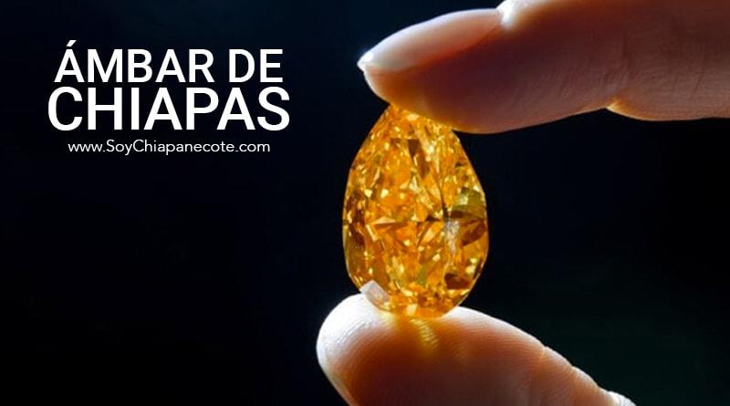 Ámbar de Chiapas: La joya más preciosa del estado