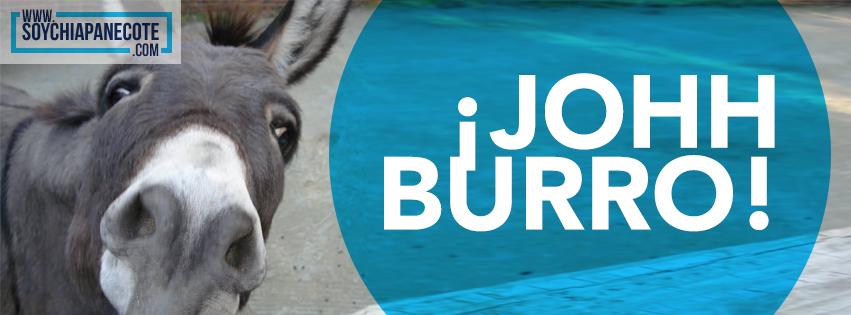 Frase típica de Chiapas - Joh Burro