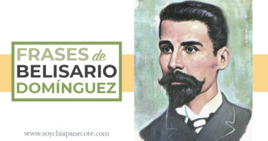 Frases de Belisario Domínguez