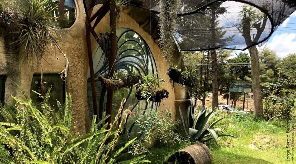 Reserva ecologica Mooxviquil Orquideas